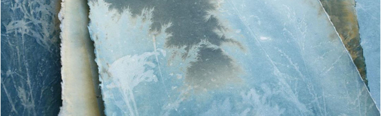 PRINTING WITH THE SUN – CYANOTYPE WORKSHOP