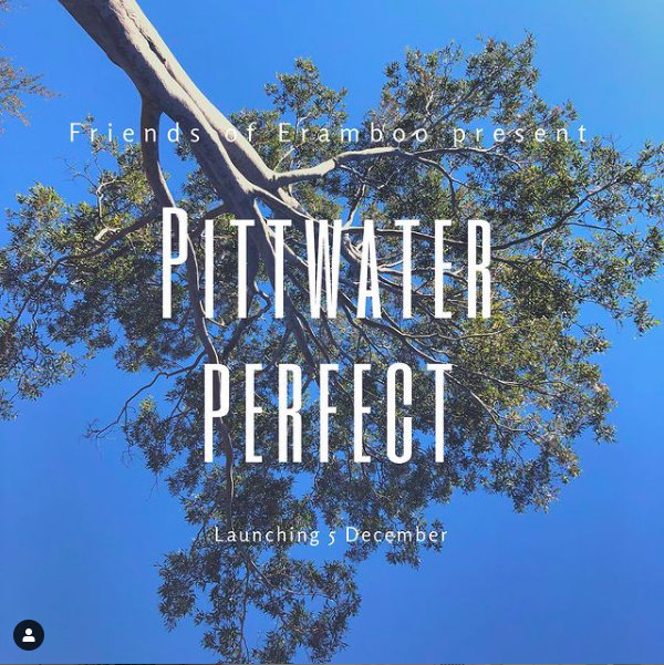 PITTWATER PERFECT: A Friends of Eramboo Group Exhibition