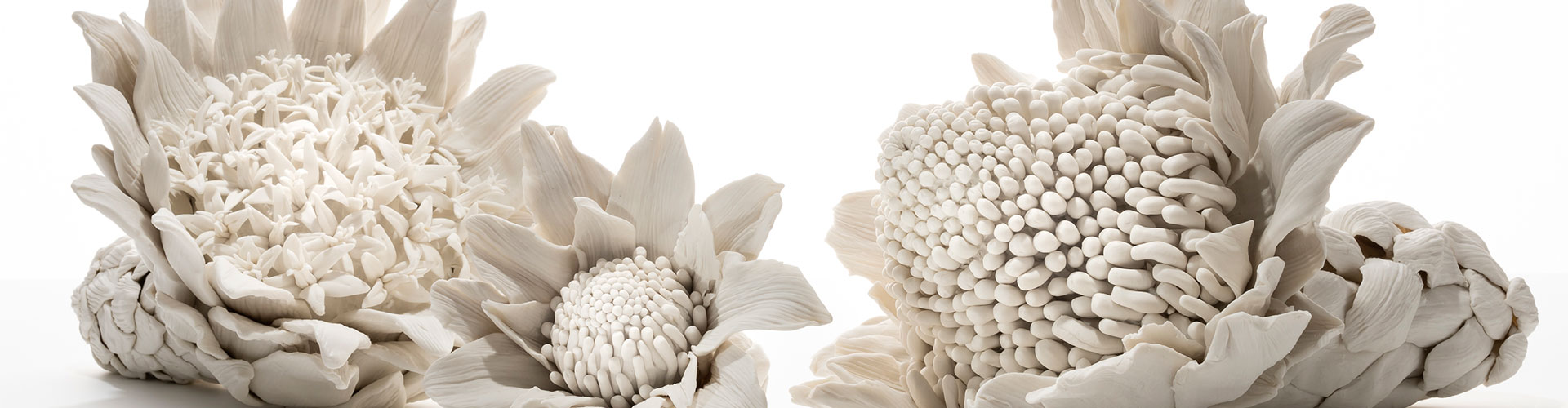 PORCELAIN FLOWERS Q AND A WITH MICHELLE PERRETT AND GREG STONEHOUSE